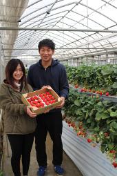 金子苺農園さん